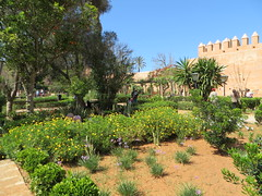 Rabat kasbah des Oudaya_0560 (JespervdBerg) Tags: holiday spring 2016 africa northafrican tamazight amazigh arab arabic moroccanstyle moroccan morocco maroc marocain marokkaans marokko rabat qasbah kasbah qasba oudayas oudaias