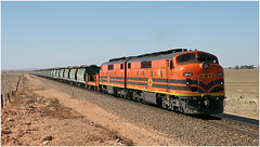 GM memories (Bingley Hall) Tags: australia southaustralia transport train transportation transit rail railway railroad locomotive diesel engine emd 567c clydeengineering streamliner bulldog commonwealthrailways gwa geneseewyomingaustralia grain artc railpage:class=41 rpaugmclass2 railpage:livery=39 gm42 railpage:loco=gm42 rpaugmclass2gm42 kallora