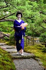 ( (nobuflickr) Tags: 20160718dsc04432      maiko  geiko   kyoto japan miyagawahou