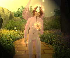 The good fae (niki wirefly) Tags: fae fairy fairey male fantasy landscape colour secondlife wings niki sl oz