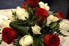 Roses (Norah_Studio) Tags: red roses white green nature colors beautiful leaves table nikon decoration redroses whiteroses tabledecorations partydecoration d5100 nikond5100 d5100nikon
