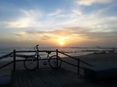 """There is a time to every purpose under the heaven."" (mariaminhota) Tags: light sunset sky luz praia beach portugal bike bicycle bicicleta céu pôrdosol mybike viladoconde nortedeportugal specializedbike portuguesesea praiasdeportugal marportuguês northofportugal ecclesiastes3 ilustrarportugal portugalbeaches canonpowershotsx210is eclesiastes3 praiadascaxinas"