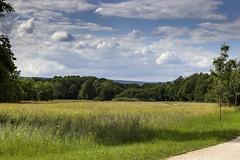 Blick in den Taunus 2 Schritt voraus (Katz-Ffm) Tags: clouds forrest frankfurt meadow wiese wolken wald taunus buga hausen