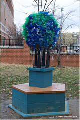 Plastic Bottle Topiary (James0806) Tags: washington districtofcolumbia plastic recycling plasticbottles
