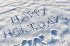 HAPPY HOLIDAYS (Leo Reynolds) Tags: christmas xmas webthing photofunia xleol30x xxx2014xxx