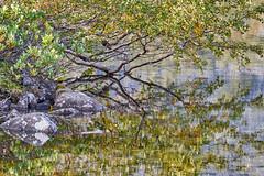 (Igor Philippov) Tags: lake nature reflections landscape kola peninsula 18135 khibiny xt1
