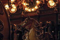 horse (Through the lens of a local) Tags: park old horses sculpture horse classic netherlands car animal statue kids dark lights europa europe play ride antique circles go kinderen nederland beelden pony round theme around anton merry efteling dier oud oude attraction beeld carrousel donker lichtjes paard paarden cirkel draaimolen designed spelen thema rond fashioned pretpark rijden klassiek antiek cirkels attractie lampjes stoomcarrousel rondje pieck rondjes ontworpen