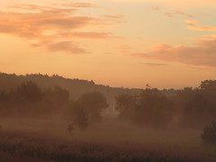 POLESIE (Jolanta N.) Tags: sunset summer nature nationalpark lakes marsh jezioro polesie parknarodowy wytyczno wytyckie