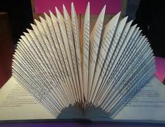 Book  art (blondinrikard) Tags: art book pattern repetition symetry symetri