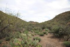 STONE HOUSE 2-22-15 095 (Joseph Sass) Tags: arizona mountains canon desert tucson az tucsonmountains arizonacanon arizonapassages