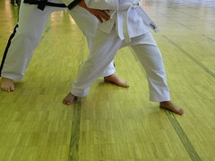 DSC03298 (restoncommunitycenter) Tags: kids youth teens teen workout adults taekwando excecise rcc2015taekwandoclasses taekwandoclasses