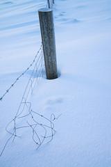 DSC01366 (ekremenak) Tags: photo iceland 1502 150212