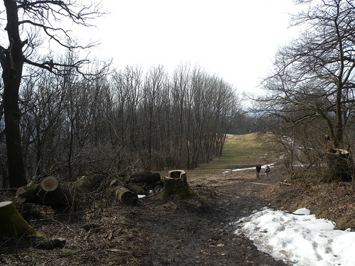 20150301_053_RU2_Hermannskogel_