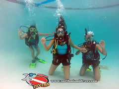 Learning to Scuba Dive-February 2015-56 (Squalo Divers) Tags: usa divers florida miami scuba diving learning padi squalo