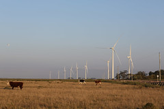 Parque Eólico Geribatu (RS) (Programa de Aceleração do Crescimento (PAC)) Tags: rs riograndedosul pac obras energia aerogeradores uee santavitóriadopalmar usinaeólica geraçãodeenergia infraestruturaenergética parqueeólicogeribatu usinageribatu complexoeólicocamposneutrais