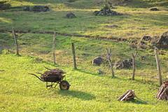 Gardening (Douglas Pfeiffer Cardoso) Tags: brazil verde green nature grass brasil fence garden gardening grama cerca riograndedosul wheelbarrow barrow arame gramado carrinhodemo jardinagem trsforquilhas