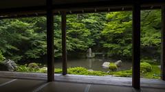 Summer at Renge-ji  (Patrick Vierthaler) Tags: summer green station japan garden temple japanese kyoto sommer line  northern kansai garten nord tempel hiei  dentetsu  japanischer renge hieizan  eizan rengeji guchi  yase