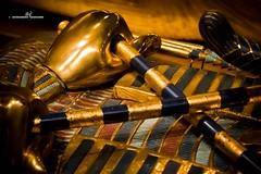 Sarcophagus - Detail (max.fontanelli) Tags: king treasure tomb egypt re tesoro tomba egitto oro tutankhamun pharaon golg faraone