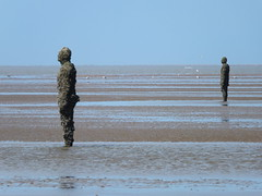 DSCF0708 (SierPinskiA) Tags: sea shells beach liverpool sand ironman pools barnacles ironwork mayday seashore merseyside anthonygormley irishsea 2016 anotherplace crosbybeach blundellsands fujixs1