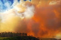 DSC_0354 fire hdr 850 (guine) Tags: grandcanyon grandcanyonnationalpark canyon northrim fire smoke fullerfire trees plants hdr qtpfsgui luminance