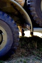 Repos Soldat... (FR4GIL3) Tags: france car shoes pentax voiture collection couleur soldat k5 arme ancienne ancien repos roue chaussure dtails exterieur vhicule