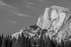 Half Dome (charyazziephotos) Tags: yosemite halfdome california blackandwhite trees clouds nationalpark nationalmonument photography canon5dmiii