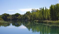 El Picazo, Cuenca (SigridCaballero) Tags: espaa naturaleza ro spain agua paz paisaje aire libre cuenca tranquilidad airelibre serenidad picazo