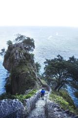 Parasos perdidos (mls2012) Tags: cantabria faro farodelcaballo santoa escaleras naturaleza nature atardecer mar sea tree arboles piedras rocas acantilados