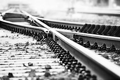 """""""...The train sped down the line It was the last train he would ride..""""  from the song by Stereophonics (eggii) Tags: 365 project"""