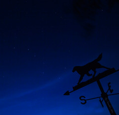 Ursa Major and Canis Flat (Blazingstar) Tags: flatcoated retriever weather vane ursa major bigdipper night