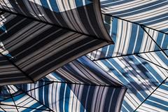 summer umbrellas, part 2 (Nina ZM) Tags: ifttt wordpress