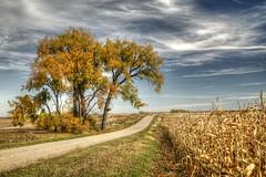 fall elements (journey ej) Tags: horizonscalendar2018'