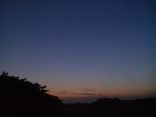 #sunrise #sky #blue #trees  #DIU_Hostel  #gholagraphy  #mobilephotography