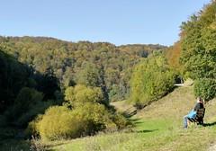 Goldener Oktober (to.wi) Tags: filsursprung wiesensteig towi landschaft landscape ruhe erholung herbst autumn laub laubfrbung frhherbst stauferkreis