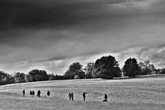 Stormwatch (wibblux) Tags: bw badenwrttemberg clouds field meadow mystery nature tree