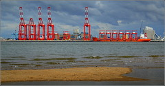 ZHEN HUE 8 (Port of Liverpool)  (Peel Ports) deep water container terminal. 7th October 2016 (Cassini2008) Tags: portofliverpool rivermersey zhenhue8 china liverpooldeepwatercontainerterminali peelports