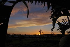 Sunset over Mar Menor golf resort (RagbagPhotography) Tags: spain murcia marmenor leaves palm framed sky contrast shadow silhouette sunset