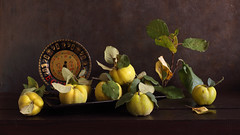 The Sum Of Life (panga_ua) Tags: thesumoflife autumn fall october fruits quince quinces golden greenleaves blacktray paintedplate decorative color shape natural