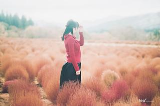 GLOWING AUTUMN | Sony A7R2 + Laowa 105mm F2 Bokeh Dreamer