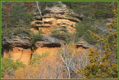 <> Brady's Bluff Study - II. <> (Wolverine09J ~ 1 Million + Views) Tags: perrotspwisc16 bradysbluff statepark landscape scenic wisconsin autumn escarpment rockface foliage nature naturescreations