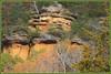 <> Brady's Bluff Study - II. <> (Wolverine09J ~ 1 Million + Views) Tags: perrotspwisc16 bradysbluff statepark landscape scenic wisconsin autumn escarpment rockface foliage nature naturescreations naturesgallery naturespotofgoldlevel1
