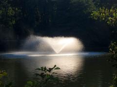 Jet d'eau (macpeloup) Tags: bordeaux lieux parcbourran agua eau water fountain jetdeau chorrodeagua
