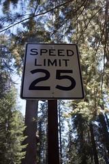 Reduce speed ! (annelaurem) Tags: speedlimitsign sign sequoianationalpark sequoi tree bluesky perspective 25 holidays arbre foret forrest sky ciel sequoia america amrique usa