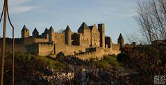 La cit de Carcassonne (Aude) (Alexis Martinez Crations) Tags: christmas cit noel aude enfant carcassonne ville carrousel magie pre