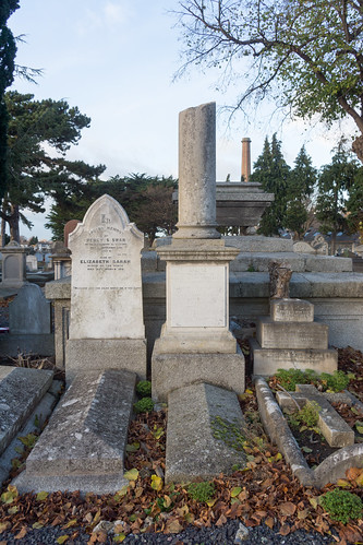 Mount Jerome Cemetery & Crematorium is situated in Harold's Cross Ref-100432