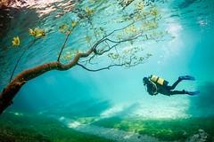 798205150948492 (alleyntegtmeyer7832) Tags: travel lake austria see europe gruner