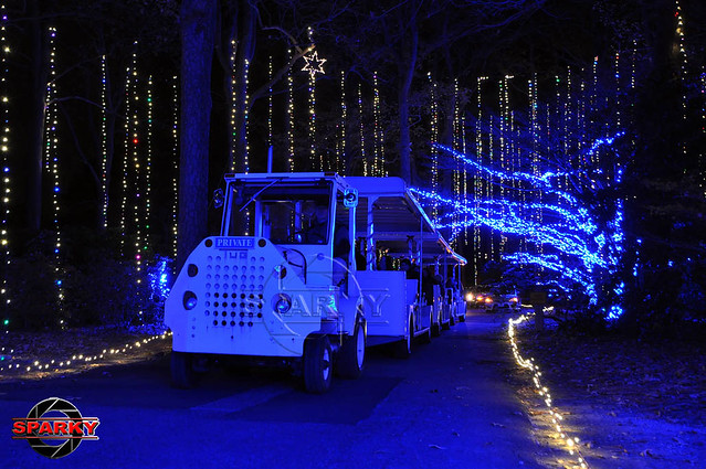 Dominion Garden of Lights 2014