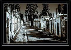 Cemitrio dos Prazeres (madmtbmax) Tags: blackandwhite bw friedhof portugal cemetery lisboa lisbon sw lissabon schwarzweiss cemitriodosprazeres daarklands