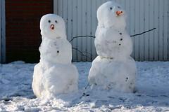 sneeuwpoppen (fotorotterdam) Tags: winter snow snowman rotterdam sneeuw snowmen sneeuwpop sneeuwpoppen