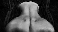 Spinal dimples (FotoGrazio) Tags: blackandwhite man sexy male art sex naked nude chair erotic slim skin smooth erotica waist dimples spine shoulders sexual bodyart buttocks greyscale filmgrain wickerchair lowerback trapezius shoulderblades waistline upperback middleback graytones fotograzio waynegrazio